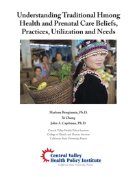 traditional Hmong healthcare report